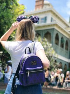 best size backpack - best backpacks for amusement parks