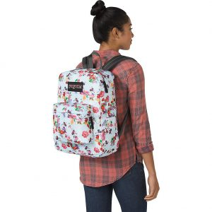 Jansport best backpack for Disney world