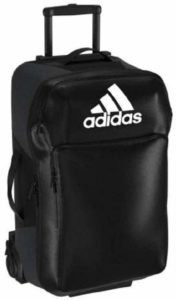 best backpack for athletes and sport