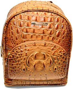 Brahmin Mini Dartmouth Backpack