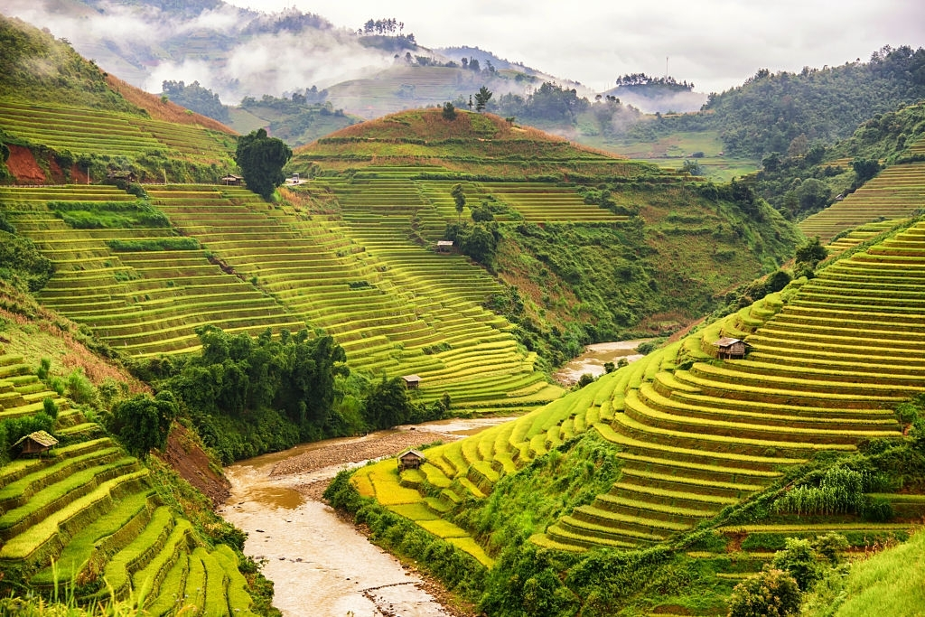 Beautiful landscape view of rice terrace in Mu cang chai , Northern Vietnam