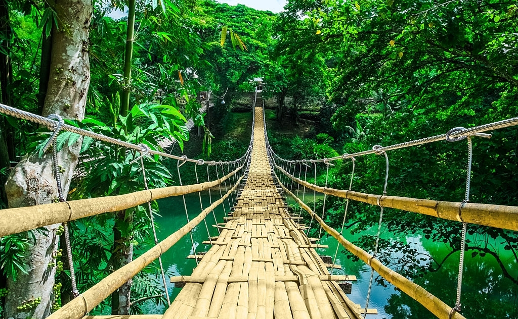 Bamboo pedestrian hanging bridge over river in tropical forest, Bohol, Philippines, Southeast Asia